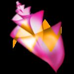 PhotoShine 2015 Full Serial